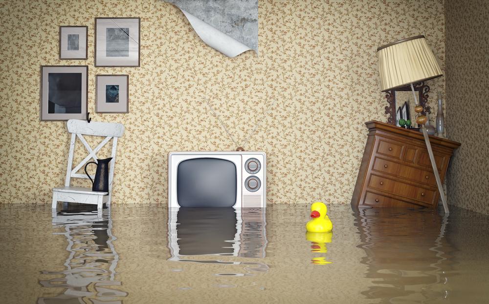 A1 Choice Plumbing and Drain Kelowna Plumbing Flooded Basement
