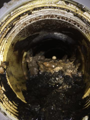 Kelowna-plumbers-A1-Choice-clogged-drain