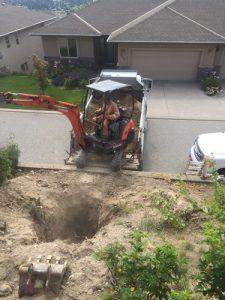 plumbing, sewer, excavation, tree root intrusion